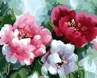 """Картина по номерам """"Пионы в цвету"""" (400х500 мм)"""