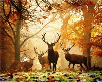 "Картина по номерам ""Олени в лесу"" (400x500 мм)"