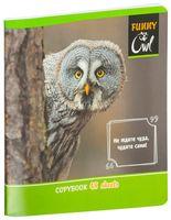 """Тетрадь полуобщая в клетку """"Funny Owl"""" (48 листов; в ассортименте)"""