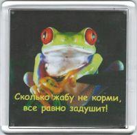 "Магнит ""Сколько жабу не корми..."" (арт. М122)"