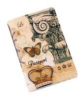 Обложка на паспорт (арт. C1-17-639)