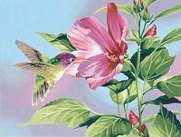 """Картина по номерам """"Гибискус и колибри"""" (280х360 мм; арт. 91419-DMS)"""