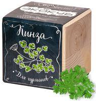 """Набор для выращивания растений """"Экокуб. Кинза"""""""