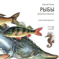Рыбы. Ихтиология в картинках
