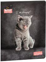 """Тетрадь полуобщая в клетку """"Angry Kitten"""" (48 листов; в ассортименте)"""