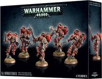 Warhammer 40.000. Chaos Space Marine. Raptors (43-13)