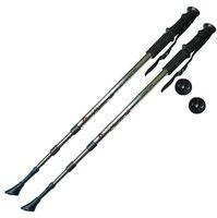 Палки для скандинавской ходьбы трёхсекционные (90-135 см; серебряные; арт. F18434)