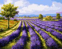 "Картина по номерам ""Лавандовое поле"" (500х650 мм)"