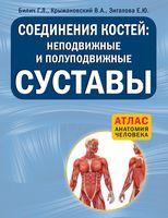 Соединения костей. Неподвижные и полуподвижные суставы