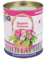 """Набор для изготовления топиария """"Тюльпаны в корзинке"""""""