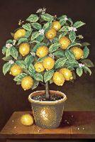 """Вышивка бисером """"Лимонное дерево"""""""