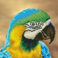 "Алмазная вышивка-мозаика ""Попугай"" (300х300 мм)"