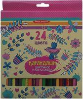 """Набор карандашей цветных """"Птички и цветы"""" (24 цвета)"""