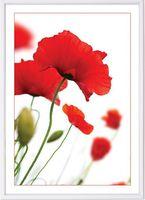 """Фоторамка пластиковая """"Poster lux white"""" (21x29,7 см)"""