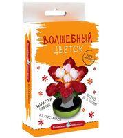 """Набор для выращивания кристаллов """"Красный цветок"""""""