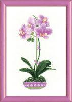 """Вышивка крестом """"Сиреневая орхидея"""" (арт. 1163)"""