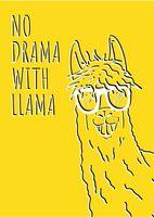 "Открытка ""No drama with llama"""