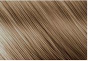 """Крем-краска для волос """"Nouvelle"""" (тон: 8.13, светло-пепельный золотисто русый)"""