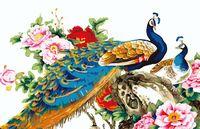 "Картина по номерам ""Китайские павлины"" (400x500 мм; арт. MG110)"