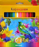 """Цветные карандаши """"Солнечный креатив"""" в картонной коробке (24 цвета)"""