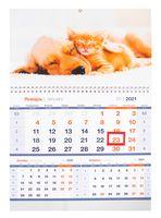 """Календарь настенный квартальный на 2021 год """"Верные друзья"""" (29,5х47,5 см)"""