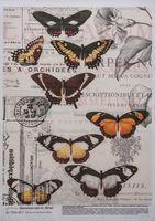 """Бумага для декупажа """"Бабочки на винтажном фоне"""" (210х300 мм)"""
