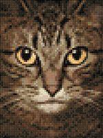 "Алмазная вышивка-мозаика ""Мудрый кот"" (150х200 мм)"