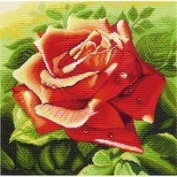 "Канва с нанесенным рисунком ""Красная роза"""