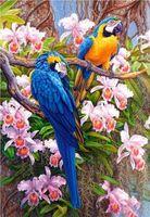 """Картина по номерам """"Попугаи и орхидеи"""" (400х500 мм)"""