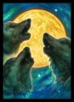 """Протекторы """"3 Wolves"""" (67х92 мм; 50 шт.)"""