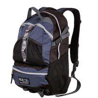 Рюкзак П909 (20 л; синий)
