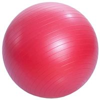 Мяч гимнастический (65 см; арт. 601114-1)