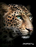 Блокнот настоящего хищника (Гепард)