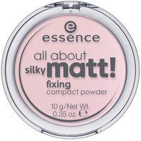 """Компактная пудра для лица """"All About Silky Matt!"""" тон: 10"""