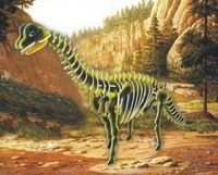 """Сборная деревянная модель """"Брахиозавр"""" (бракозавр)"""