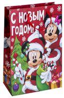 """Пакет бумажный подарочный """"Яркого праздника"""" (31х40х10 см)"""