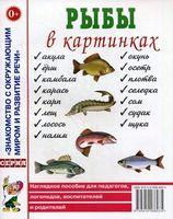 Рыбы в картинках