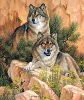 """Алмазная вышивка-мозаика """"Пара волков"""""""