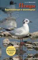 Птицы. Водоплавающие и околоводные