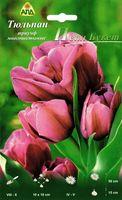 """Тюльпан триумф многоцветковый """"Пепл Букет"""""""