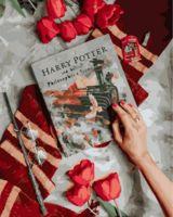 """Картина по номерам """"Вселенная Гарри Поттера"""" (400х500 мм)"""