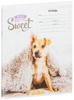 """Тетрадь в линейку """"Pretty Sweet"""" (18 листов)"""