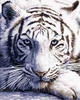 "Картина по номерам ""Взгляд тигра"" (400x500 мм; арт. MG3290)"