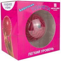 """Лабиринтус """"Планета"""" (10 см; легкий уровень)"""