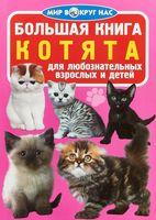 Большая книга. Котята