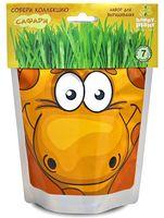 """Набор для выращивания растений """"Сафари. Жираф"""""""