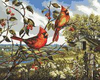 """Картина по номерам """"Красное великолепие"""" (410х510 мм; арт. PLD-21784)"""